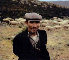 Sardinia:traditional sheep breeder