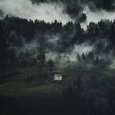 Lone House in Sinister Misty Woods