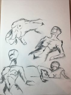 Human Anatomy Sketch
