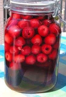 A n interesting recipe for Cherry Liqueur just came my way via Annie Samuelian Alexanian. Cocktail Drinks, Alcoholic Drinks, Cocktails, Armenian Recipes, Armenian Food, Cherry Liqueur, Recipe From Scratch, Limoncello, Homemade Beauty Products