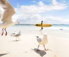 La Bιtch At The Beach Pιnk ❀