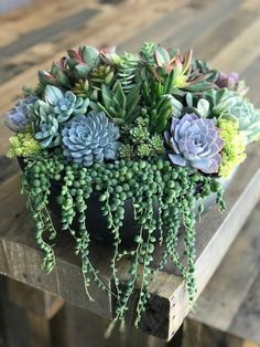 Succulent Centerpiece-Housewarming, birthday gift. Large Statement Centerpiece Black OR Bronze Planter w/ Live Succulents - #birthday #black #Bronze #Centerpiece #CenterpieceHousewarming #Gift #large #Live #Planter #Statement #Succulent #succulents