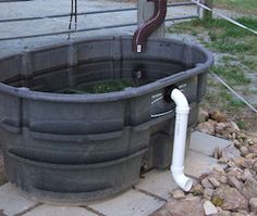 Horse Sense: Water For Emergencies, How to keep collected horse trough water clean. Brilliant!!!