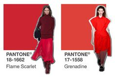 Farbtrend Herbst Winter, Herbst Winter Collection 2017, Trend Farben, Pantone,