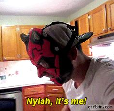 """Darth Maul Mask - There is a """"Special"""" kind of HELL, for pet Owners like this...."""