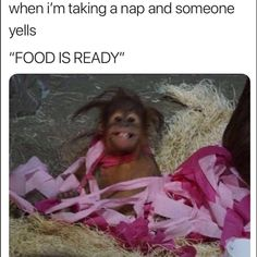 When I'm Taking A Nap And My Mom Yells The Foods R. ~ Memes curates only the best funny online content. The Ultimate cure to boredom with a daily fix of haha, hehe and jaja's. Really Funny Memes, Stupid Funny Memes, Funny Relatable Memes, Fuuny Memes, Funny Best Friend Memes, Funny Meme Quotes, Bruh Meme, Funny Friends, Memes Humor