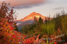 Autumn on Mount Hood by Gary Randall, via Flickr