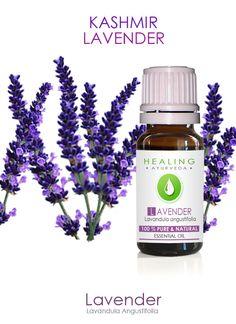 Lavender Essential oil- Kashmir Lavender oil- 100% Pure Lavender- Therapeutic lavender- Skincare- bath- beauty oil- versatile oil- Ayurveda by FairOrganic on Etsy