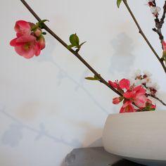 spring ikebana - moribana vase by Geraldine K., ceramiste. more on www.geraldine-k-ceramiste.com Ikebana, Vase, Spring, Home Decor, Drawings, Decoration Home, Room Decor, Vases, Home Interior Design