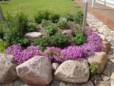 Landscaping With Rocks, Garden Landscaping, Summer Garden, Home And Garden, Outdoor Projects, Outdoor Decor, Backyard Plan, Garden Planning, Curb Appeal