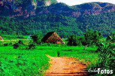Vinales (West end of island - Cuba) Vinales, Cuba, West End, Beautiful Islands, Homeland, Bella, Places Ive Been, Natural Beauty, Past