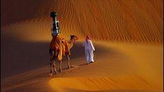 Google Street View in the desert - daylol.com