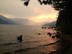 Donner Lake with Frat Boy in it.  The smoke's from the California Sierra Rim Fire...  photo-5