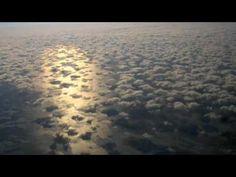 Robert Haig Coxon   Angelic Love Section 1