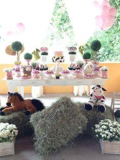 Bruna Tilli Festas | fazendinha cor de rosa