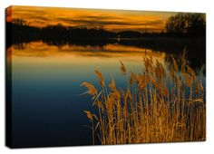 "11"" x 14"" Canvas Gallery Wrap Landscape Photograph: Sunset at Reedy Point Pond. View all of the beautiful landscape photos by nature and landscape photographer Melissa Fague at:  https://www.etsy.com/shop/PIPAFineart Limited edition fine art landscape photography prints and traditional photo prints for wall decor are also available in a variety of sizes."