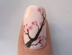 Love Cherry Blossoms