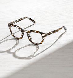Warby Parker Laurel 17