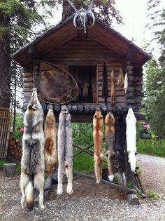Nita - isn't that the old Alaska Land? Visit an ancient Indian village, Fairbanks Alaska North To Alaska, Alaska Usa, Alaska Travel, Alaska Trip, Fairbanks Alaska, Anchorage Alaska, Alaska Homestead, Alaska Cabin, Alaskan Cruise