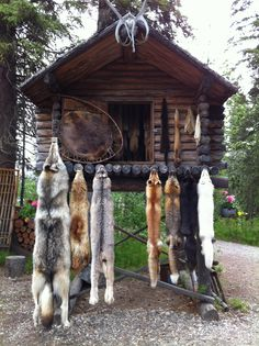 Visit an ancient Indian village, Fairbanks Alaska