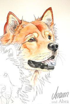 Tierportrait Aquarell von Hunden (Eurasier), von Aram und Abra.