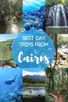 Cairns, on the Eastern coast of Australia, is the perfect base from which to discover some stunning Australian landscapes. Find out the 7 best day trips that you can do from Cairns, including a scuba diving on the Great Barrier Reef, visiting the Daintree rainforest and more! #australia #greatbarrierreef #cairns #bestdaytrips #daytrips #daintreerainforest #travel #travelblog
