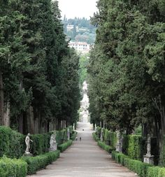 A Tuscan Garden Tutorial   Designer Charlotte Moss brings home eight key lessons from her grand tour of Italian estates .. read more.