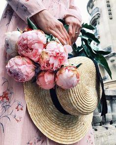 Ana Rosa~My Favorites Bouquet, Pink Peonies, Peony, Paper Peonies, Purple Roses, Ranunculus, Beautiful Flowers, Bloom, Plants
