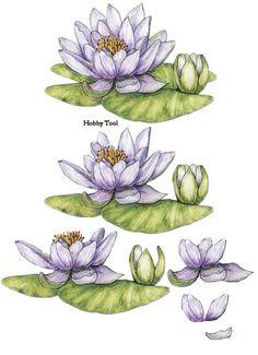 3d fleurs - Page 13