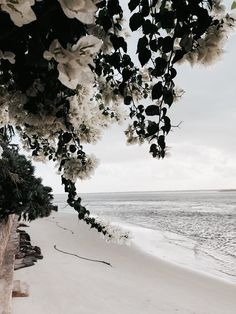 Pin by 𝐑𝐨𝐬𝐬𝐲 on flower power Beautiful World, Beautiful Places, Mode Poster, Tumblr Hipster, No Rain, White Aesthetic, Best Photographers, Island Life, Beach Day
