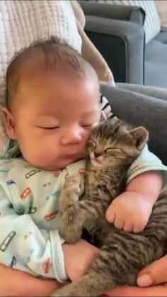 Cute Baby Cats, Cute Little Animals, Cute Cats And Kittens, Cute Funny Animals, I Love Cats, Kittens Cutest, Funny Cats, Cute Dogs, Gato Gif