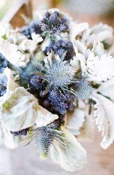 another blue thistle bouquet.  this time with white dusty miller.