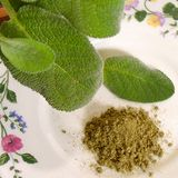 Sage Tea works well for controlling hot flashes. of dried sage to the hot water. Cover the cup with a pot cover or small plate and let the mixture steep for at least 4 hours. Add honey or lemon and enjoy it hot or cold. Sage Recipes, Herb Recipes, Yummy Recipes, Cooking With Fresh Herbs, Ground Sage, Sage Herb, How To Dry Sage, Healing Herbs, Kraut