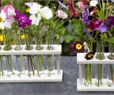 A test tube for each single stem