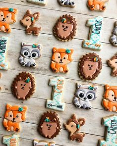 Forest animal 1st birthday set by Raining Cookies