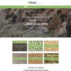 Describe this design with a single word!   Farm Responsive Website Template CLICK HERE! live demo  http://cattemplate.com/template/?go=2e5NG1j  #templates #graphicoftheday #websitedesign #websitedesigner #webdevelopment #responsive #graphicdesign #graphics #websites #materialdesign #template #cattemplate #shoptemplates