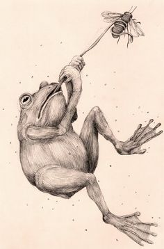 Coloring for adults-kleuren voor volwassenen Pencil Art Drawings, Animal Drawings, 3d Laser Printer, Frog Illustration, Frog Art, Sketch Inspiration, Ink Illustrations, Surreal Art, All Art