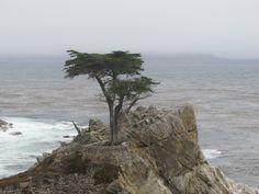 Pacific Coast off San Francisco CA