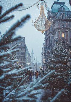 Winter Wonderland. -