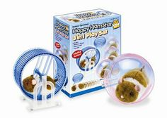 3 in 1 Hamster Set by Westminster. $19.99. 3 in 1 hamster set! Set includes battery operated hamster, exercise wheel, and ball. Hamster runs in his wheel, or rolls around on the floor in his ball. He will also work without his accessories, just put him down and away he goes!