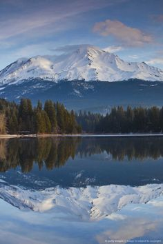 California, Mount Shasta, view of Mt. Shasta, elevation 14,162 feet from Siskiyou Lake