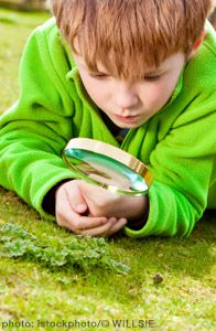 Start a Nature Journal - (from 25 Nature Activities for kids)