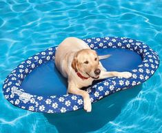 The Dog Pool Float is a floatation device constructued specifically for dogs in that it is made with heavy duty, scratch resistant material, and is great for letting your dog lounge around the pool wi...