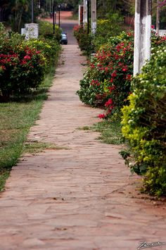 Aregua, Paraguay  #Travel, #walking #South America