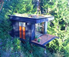 This is unreal... Beautiful treehouse office.