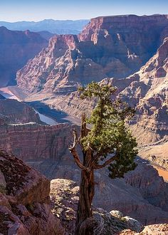 Grand Canyon West by Lutz Baar