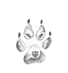 Wolves Paw Print Drawing