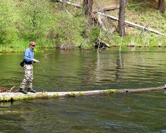 It's all about the balance. Fly fishing on the Metolius River Oreogn.