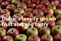 A guide to the fruit and vegetables that are locally grown in Dubai that you must try!