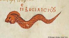 Basilisk | De materia medica | Turkey, Istanbul | mid 10th century | The Morgan Library & Museum